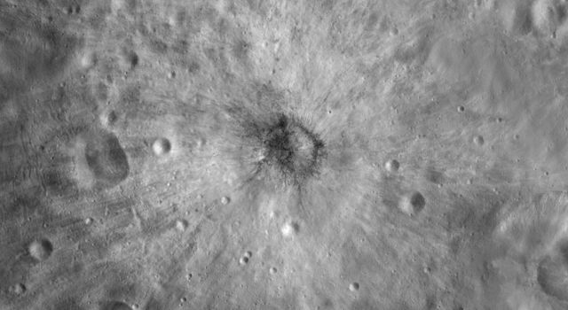 This image from NASA's Dawn spacecraft is centered on asteroid Vesta's Vibidia crater. There is a distinctive distribution of bright and dark material around Vibidia crater.