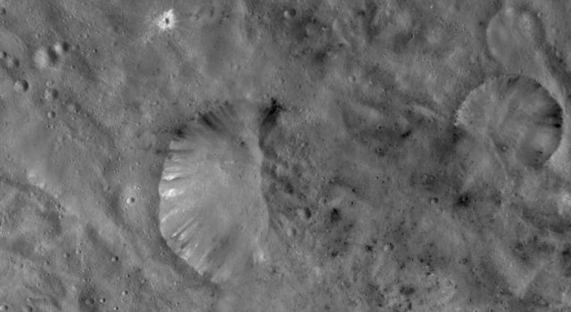 The left side of Helena crater on asteroid Vesta has a fresh and distinctive rim. Dark and bright material crops out of this part of the rim and slumps towards the center of the crater in this image from NASA's Dawn spacecraft.