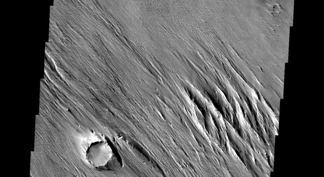 The wind eroded material in this image from NASA's 2001 Mars Odyssey spacecraft are located just north of Amazonis Mensa.