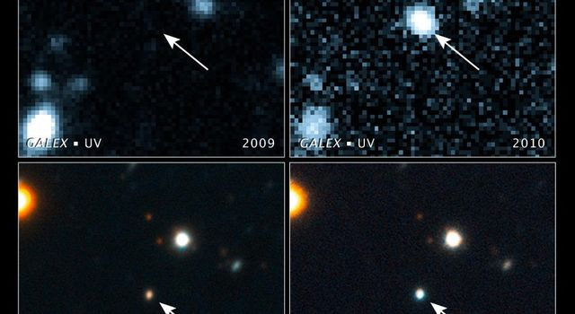 Black Hole Swallows a Star