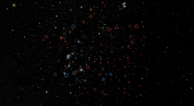 This image shows our own back yard, astronomically speaking, from a vantage point about 30 light-years away from the sun. It highlights the population of tiny brown dwarfs recently discovered by NASA's WISE. The image simulates actual positions of stars.