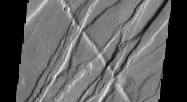 The floor of the crater at the top of this image from NASA's 2001 Mars Odyssey spacecraft is completely covered by a large sand sheet with surface dune forms. Now that is it near the end of northern spring all the frost has disappeared from the sand.