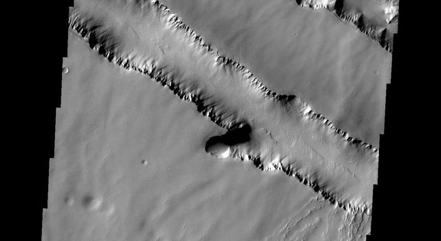 The two depression crossing this image are called Pavonis Fossae and are located just north of the volcano in this image captured by NASA's 2001 Mars Odyssey spacecraft.