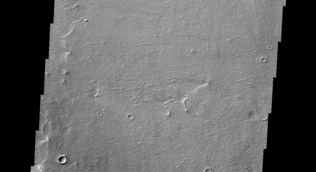 The windstreak in this image from NASA's 2001 Mars Odyssey spacecraft is located on the northwestern plains of Daedalia Planum.
