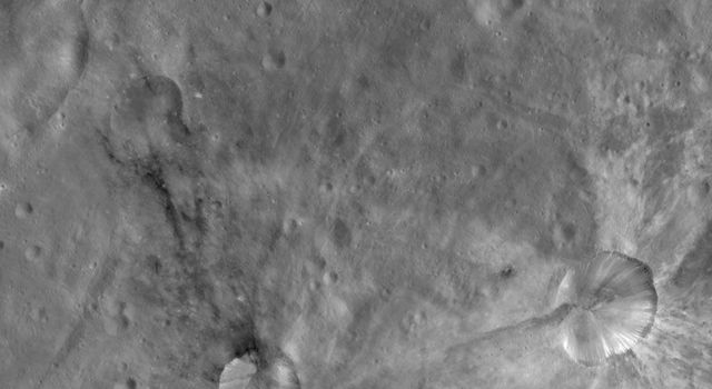 This image from NASA's Dawn spacecraft of asteroid Vesta shows Sossia and Canuleia craters. Sossia is surrounded by dark material in the bottom left of the image and Canuleia is the larger crater surrounded by bright material at bottom right.