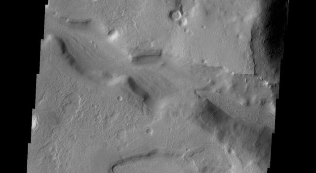 The channels in this image captured by NASA's 2001 Mars Odyssey spacecraft are located on the northern margin of Terra Sabaea on Mars.