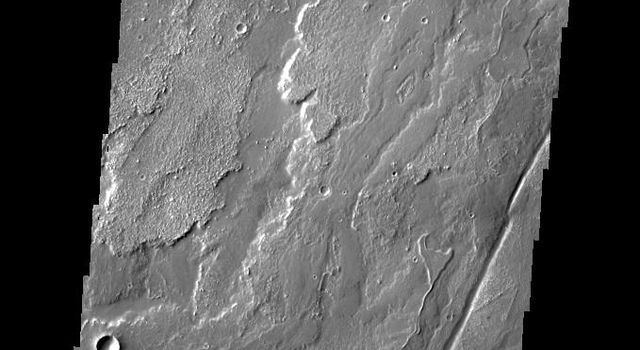 The lava flows in this image captured by NASA's 2001 Mars Odyssey spacecraft are part of Daedalia Planum on Mars, the immense plain of flows from Arsia Mons.