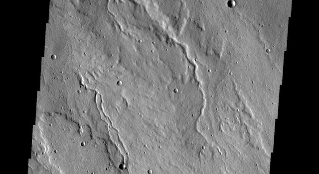 The channels in this image from NASA's Mars Odyssey spacecraft are located on the western flank of Alba Mons on Mars.
