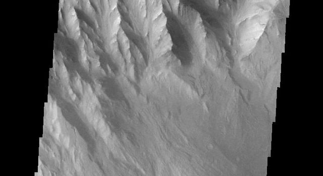 This image captured by NASA's 2001 Mars Odyssey spacecraft shows the western margin of Juventae Chasma and the dunes that occur at the base of the chasma cliff.
