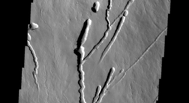 This image from NASA's 2001 Mars Odyssey spacecraft shows the southern margin of Pavonis Mons.
