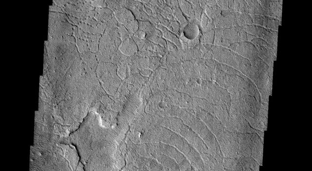 The arcuate fractures and depressions in this image captured by NASA's Mars Odyssey spacecraft are part of Avernus Cavi.