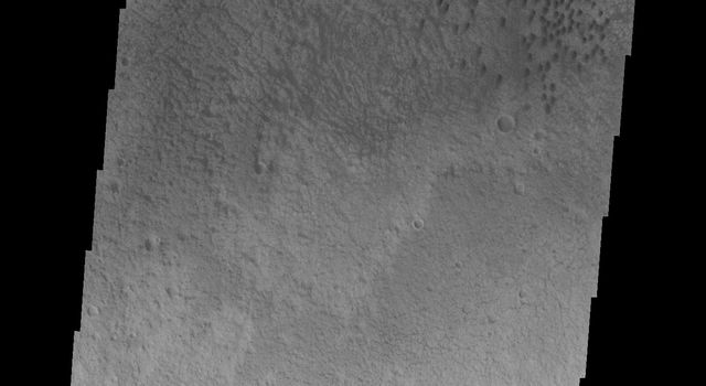 This image captured by NASA's 2001 Mars Odyssey spacecraft shows a field of dunes on the floor of an unnamed crater in Terra Cimmeria.