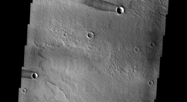 This image captured by NASA's 2001 Mars Odyssey spacecraft shows windstreaks on the volcanic plains of Daedalia Planum.