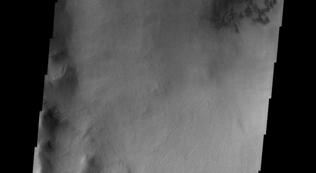 Several gullies of different sizes in this image from NASA's Mars Odyssey spacecraft are located on the southern rim of this unnamed crater in Terra Cimmeria.