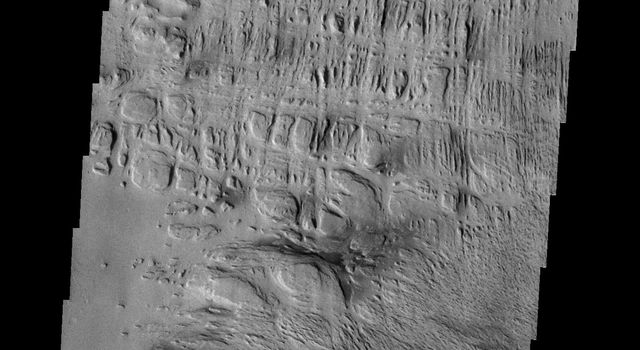 Wind has played a large role in sculpting the complex features in this image captured by NASA's 2001 Mars Odyssey spacecraft. This image is located north of Gusev Crater.