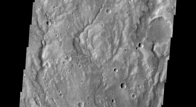 A network of large and small channels dissect this highland region in Terra Cimmeria, as shown in this image captured by NASA's 2001 Mars Odyssey spacecraft.