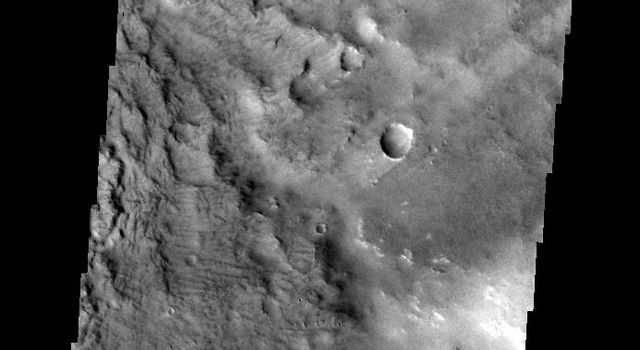 The windstreaks in this image captured by NASA's 2001 Mars Odyssey spacecraft are located in Terra Sabaea.