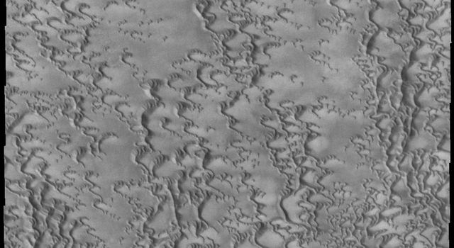 This image captured by NASA's 2001 Mars Odyssey spacecraft is of the region near Escorial Crater on Mars and shows individual dunes beginning to coalesce into a dense dune field.