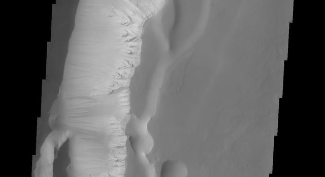Dark slope streaks marking the walls in this image of Noctis Labyrinthus captured by NASA's 2001 Mars Odyssey spacecraft.