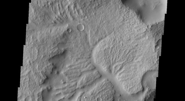 NASA's 2001 Mars Odyssey spacecraft shows the apparent effects of wind and water mark the surface of this region just northeast of Gusev Crater.