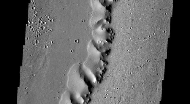 This image from NASA's 2001 Mars Odyssey spacecraft of a ridge in the Tharsis region (called Uranius Dorsum) reminds one of a skeletal spine.