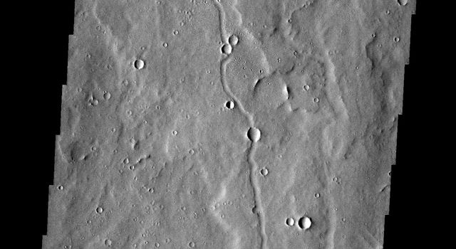 The channels in this image from NASA's 2001 Mars Odyssey spacecraft are located on the southern margin of the Elysium Volcanic region.