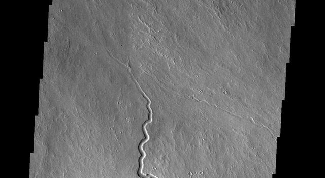 The lava channels in this image from NASA's 2001 Mars Odyssey spacecraft are located on the northern flank of Ascraeus Mons.