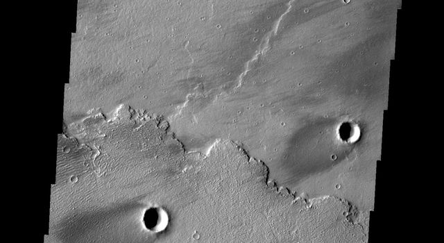 The windstreaks in this image are located in Daedalia Planum as seen by NASA's 2001 Mars Odyssey spacecraft.