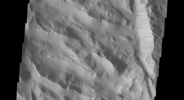 Dark slope steaks mark the ridges of this region in Lycus Sulci in this image from NASA's 2001 Mars Odyssey spacecraft.