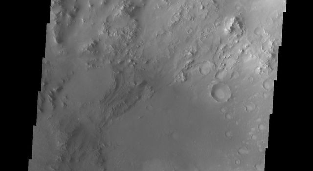 The sand dunes in this image from NASA's 2001 Mars Odyssey spacecraft are located on the floor of Hargraves Crater.
