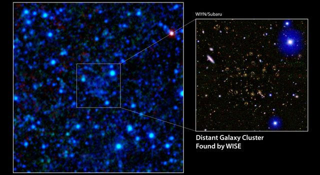 A galaxy cluster 7.7 billion light-years away has been discovered using infrared data from NASA's Wide-field Infrared Survey Explorer (WISE). The discovery image is shown in the main panel.