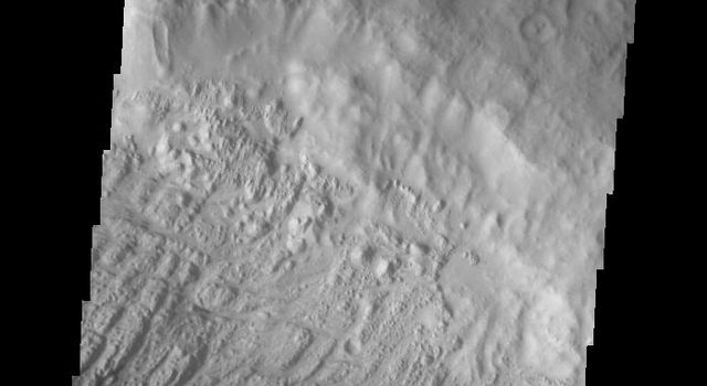 This image captured by NASA's 2001 Mars Odyssey spacecraft shows some the sand dunes on the floor of Danielson Crater.