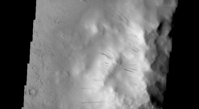 Dark slope streaks mark the side of the central peak on the floor of Cobres Crater in this image captured by NASA's 2001 Mars Odyssey spacecraft.