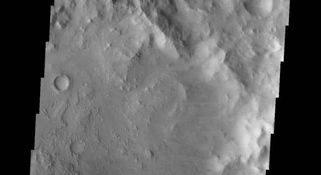 The dark dunes in this image from NASA's 2001 Mars Odyssey spacecraft are located on the floor of Escalante Crater.