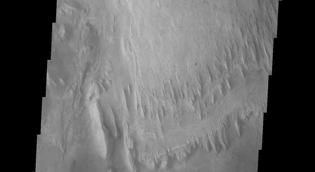 This Gale image from NASA's Mars Odyssey spacecraft shows the region just slightly south of yesterday's image. The dark region on the crater floor is sand. The dunes that encircle Mt. Sharp are most likely comprised of sand eroded from Mt. Sharp itself.