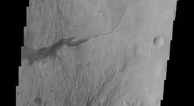 The highest elevations of Mt. Sharp are just outside this image (to the east). In the center of this image from NASA's Mars Odyssey spacecraft is a channel, indicating that fluids played a part in eroding Mt. Sharp.
