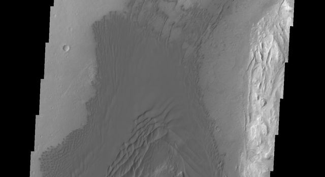 The different features of the sand and sand dune field are readily visible in this image captured by NASA's 2001 Mars Odyssey spacecraft of the western floor of Gale Crater.
