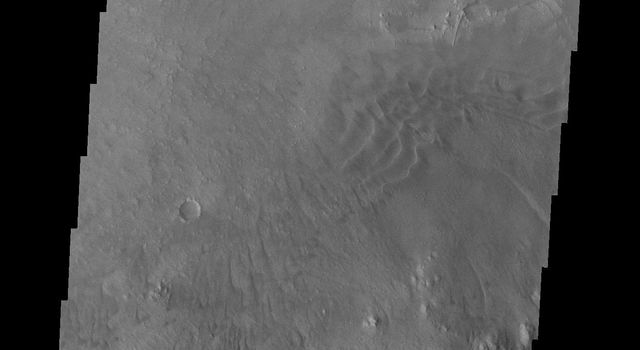 Moving further east, this image from NASA's Mars Odyssey spacecraft shows the southern extent of Mt. Sharp as well as the crater floor and rim. In this image there are small dunes near Mt. Sharp as well as dunes near the crater rim.