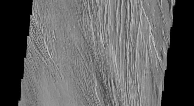 This image from NASA's Mars Odyssey spacecraft shows wind erosion that has formed yardangs. These parallel sets of ridges and valley are formed by sandblasing poorly consolidated surface materials.