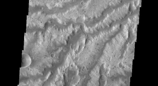 This image from NASA's Mars Odyssey spacecraft shows a portion of Arda Valles.