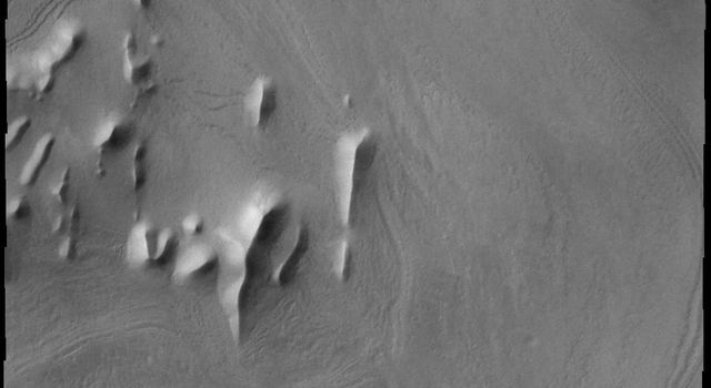 Ridges are prevalent in this image captured by NASA's 2001 Mars Odyssey spacecraft. Layers of material cover this region of Mars.