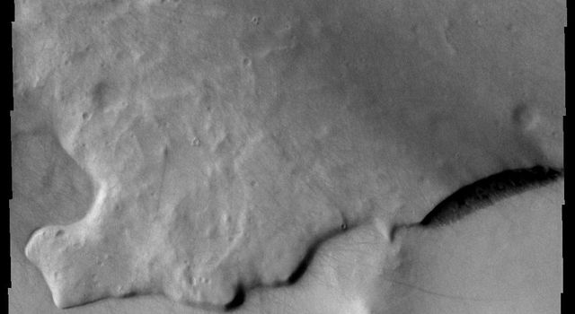 Do you see what I see? A giant fish with open mouth looks to the left in the center of this image from NASA's Mars Odyssey spacecraft.