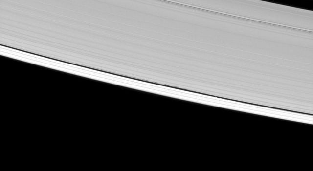 Saturn's A ring is decorated with several kinds of waves. NASA's Cassini spacecraft has captured a host of density waves, a bending wave, and the edge waves on the edge of the Keeler gap caused by the small moon Daphnis.