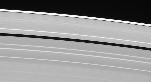 Saturn's moon Pan, named for the Greek god of shepherds, rules over quite a different domain: the Encke gap in Saturn's rings. This image is from NASA's Cassini spacecraft.