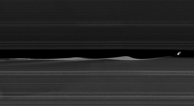 Daphnis, one of Saturn's ring-embedded moons, is featured in this view from NASA's Cassini spacecraft, kicking up waves as it orbits within the Keeler gap.