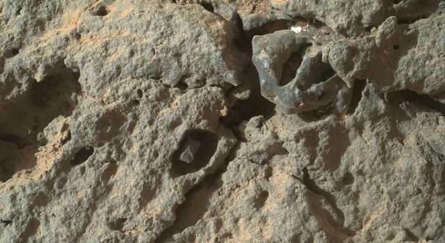 This image from NASA's rover Curiosity shows that many holes in the rock are occupied by what appears to be material different from that of the main rock itself.