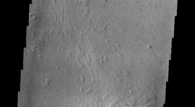 Do you see what I see this image captured by NASA's 2001 Mars Odyssey spacecraft? A large bumble bee!
