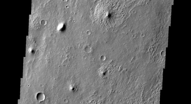 This image from NASA's Mars Odyssey spacecraft shows hills on Mars surrounded by strange radial ridges resembling a group of jellyfish.