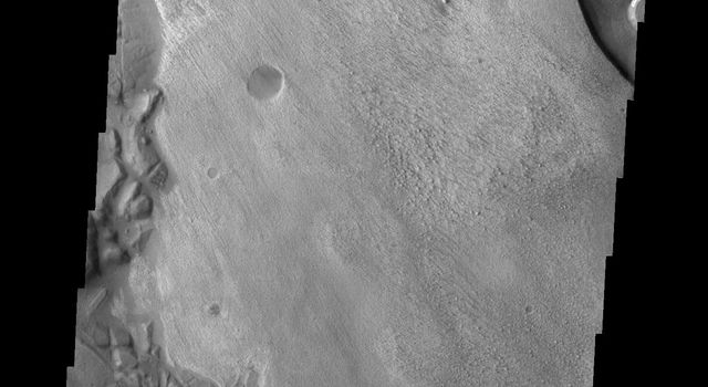 Do you see what I see in this image from NASA's Mars Odyssey spacecraft? These layered deposits look like a giant bear facing to the left.