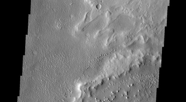 Do you see what I see in this image from NASA's Mars Odyssey spacecraft? The higher elevations in this image look like a dragon. It is facing to the left, and the small crater IS NOT the eye. The large plateau on the right is the wing of the dragon.